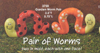 Pair of Worms